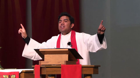 Juan 15 (1-8) - Jesús, la vid verdadera