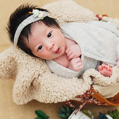 Bobi 新生兒寫真