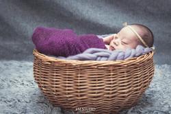 V寶 新生兒寫真