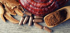 Ganoderma Lucidum Mushroom on wooden bac