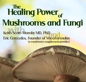 The Healing Power of Mushrooms and Fungi (A transcribed interview)