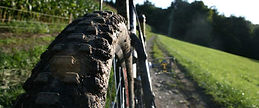 Bike back picture.jpg