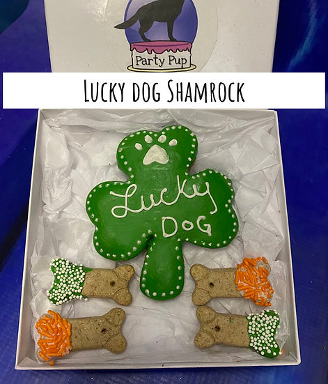 Lucky Dog Shamrock Box