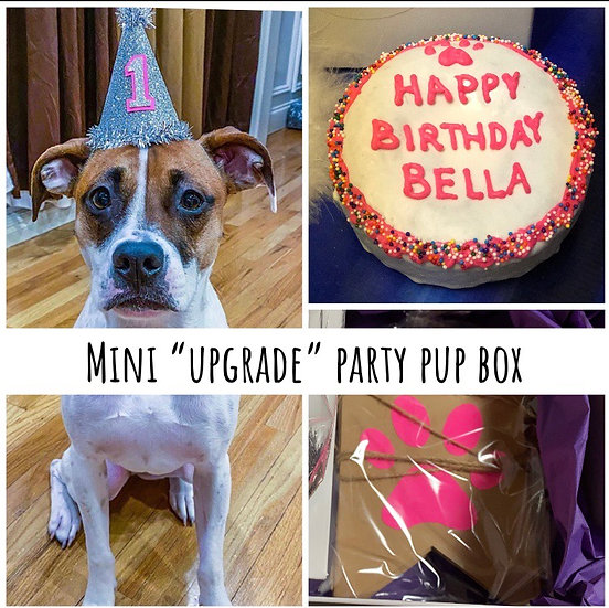 "Mini Upgrade Birthday Box 4"" Cake, Hat, Sign & Candle"