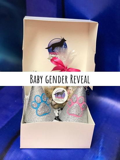 Baby Gender Reval