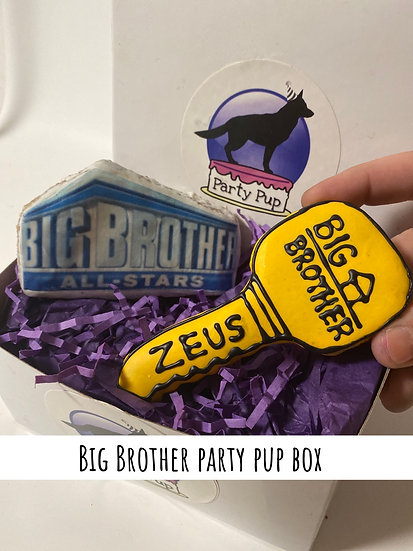 Big Brother Party Pup Box