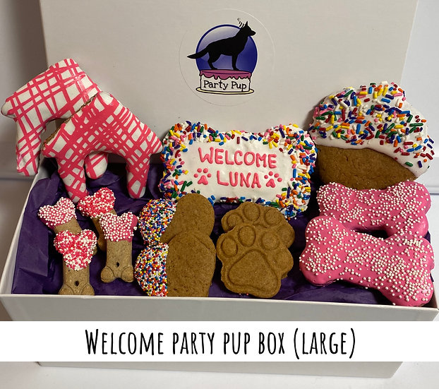 Welcome Party Pup Box (large)