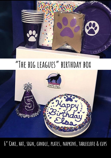 "The Big Leagues Birthday Box 6"" Cake, Hat, Candle, Sign, Tablecloth, Plates..."