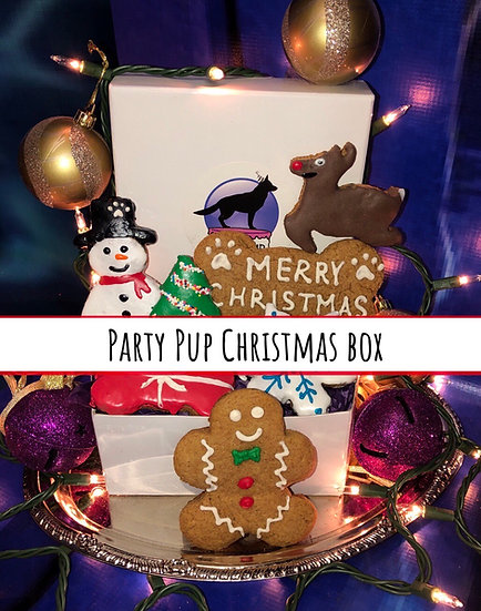 Party Pup Christmas box