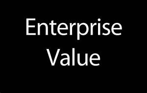 VITAL MGMT's Thesis on Enterprise Value