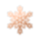 rose gold texture snowflake.png