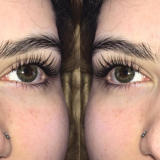 Individual Eyelash Extensions _Natural Set- $65_Style_ Dolleye