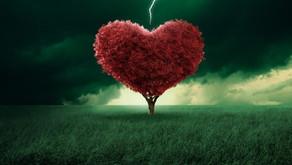 1056 - El Amor y la Disrupción Creativa