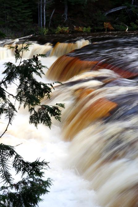 Cedar and Lower Tahquamenon Falls