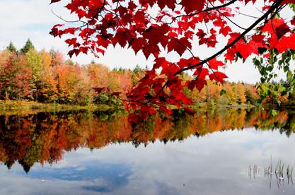 Roxbury Pond