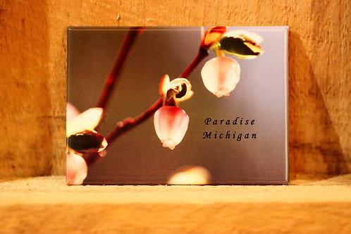 Blueberry Flower Magnet