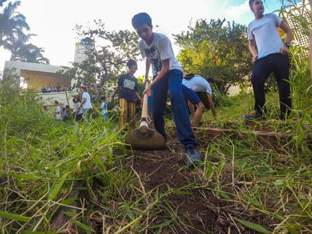 Viveiro de mudas geodésico é instalado em escola pública do Recife (PE) como prática interdisciplina