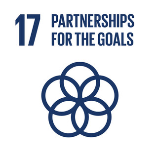 SDG 17