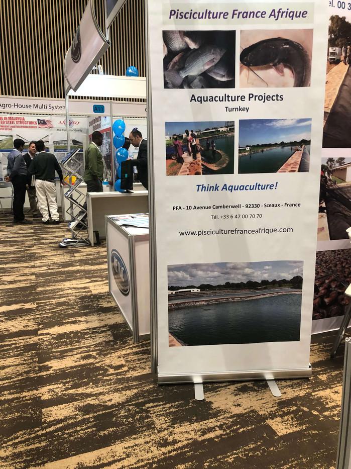 Poultry  Africa, 2019, Rwanda, Piscicult