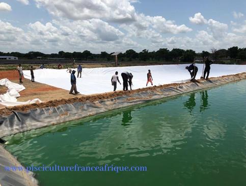 Ferme Piscicole clé en main Pisciculture France Afrique
