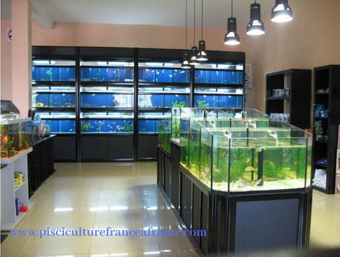 Fournisseur matériels et équipements Aquariophilie, Pisciculture France Afrique