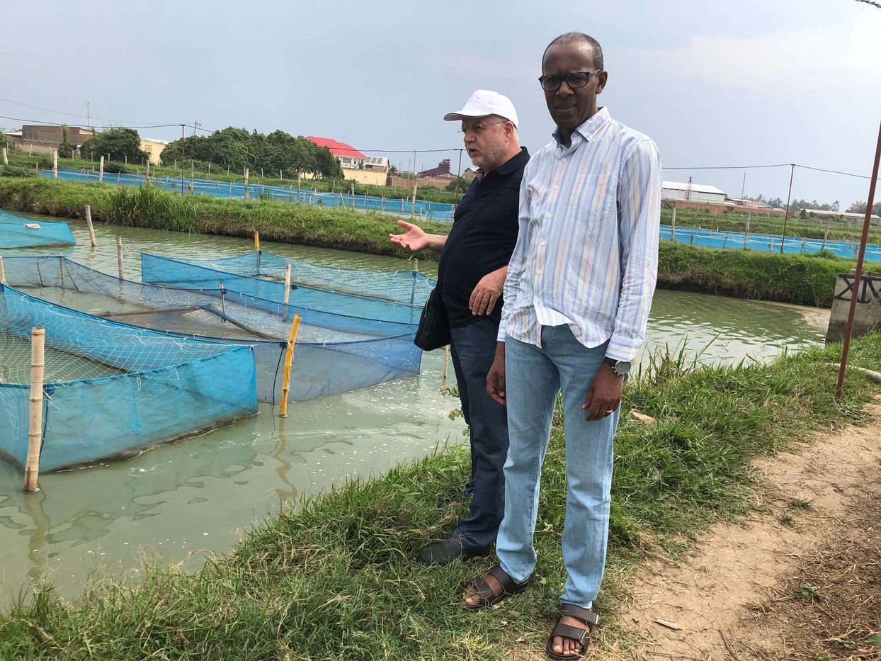 2019 Elaga, Burundi, Pisciculture France