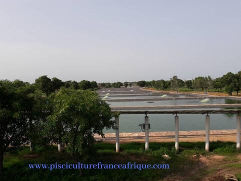 Ferme Aquacole clé en main Pisciculture France Afrique