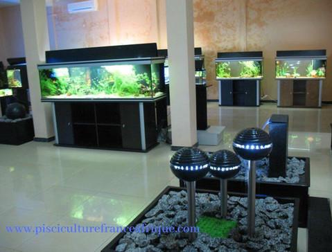 Fournisseur matériel, équipement pour aquariums et bassins de jardin Pisciculture France Afrique