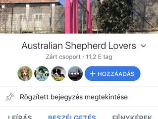 Mika on cover of Australian Shepherd Lovers
