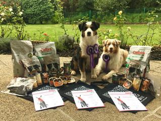 II.Pawlerina International DogDancing