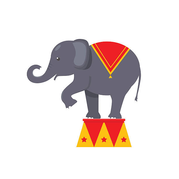 Use these clues to fill in the Elephant Puzzle! (you can Google for answers!)