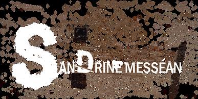 Logo Sandrine Site V6.png