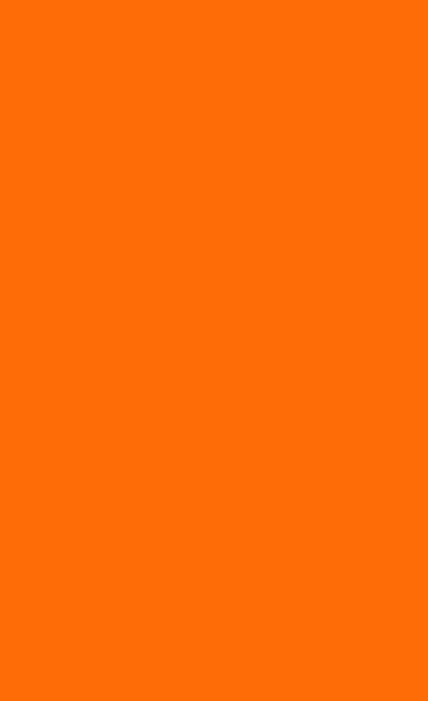 orange eclico.jpg