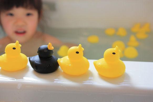 Hashy,Hashimoto,toy,campany,japan,ruber,duck,hashy top-in