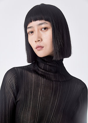 Semi-sheer turtleneck