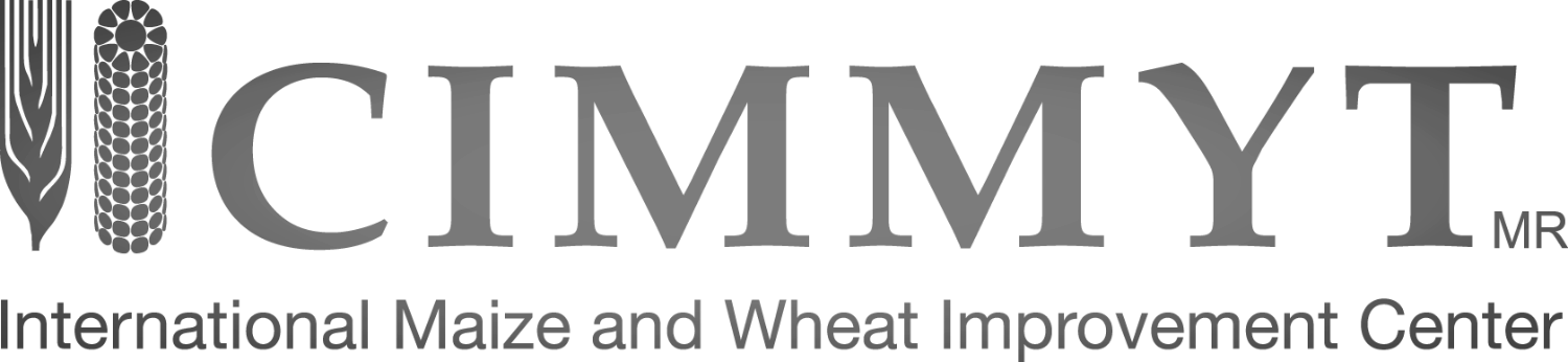CIMMYT Official Logo Green PNG