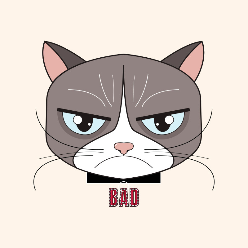 GRUMPY CAT LUCILE BASSO GRAPHISTE & ILLUSTRATRICE FREELANCE PARIS TOULOUSE