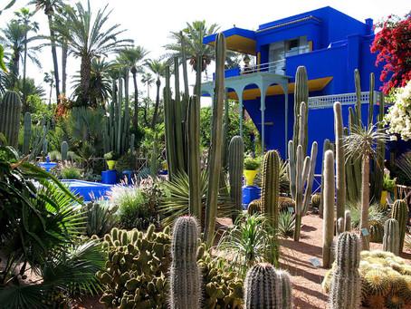 沙漠中的綠洲花園Jardin Majorelle