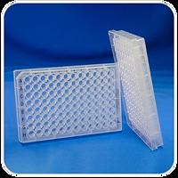 Polypropylene Multiwell Plates