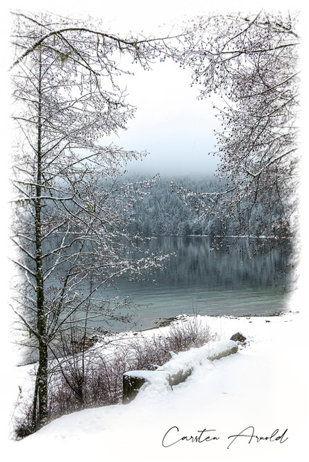 Lakeside in Winter