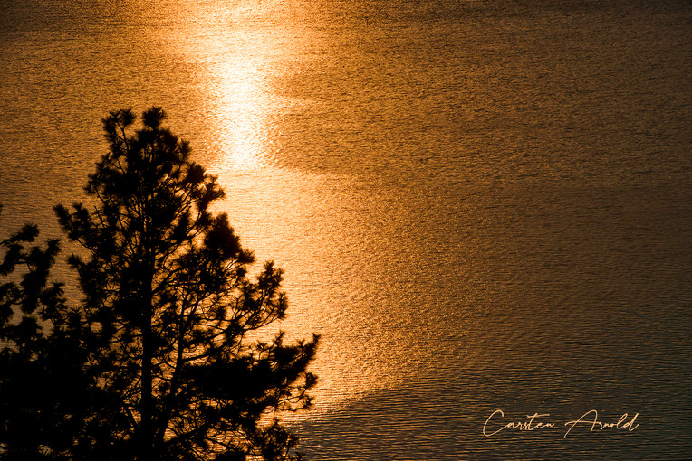 Copper Sunrise