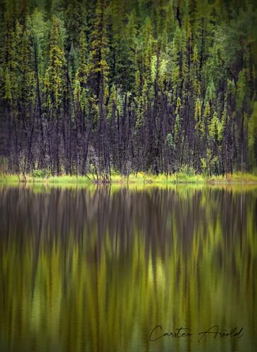 Northern Lake Reflections