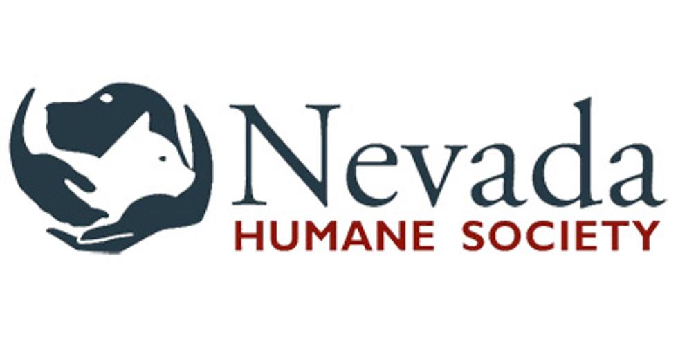 Nevada Humane Society Tour and Activity