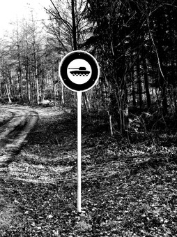 Panzer by Leo Gesess Photographer Switzerland www.comcom.ooo