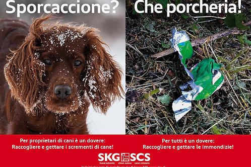 SKG Plakat-Sujet 1, Italienisch