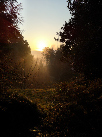 sunset fog by Leo Gesess Photographer Switzerland www.comcom.ooo