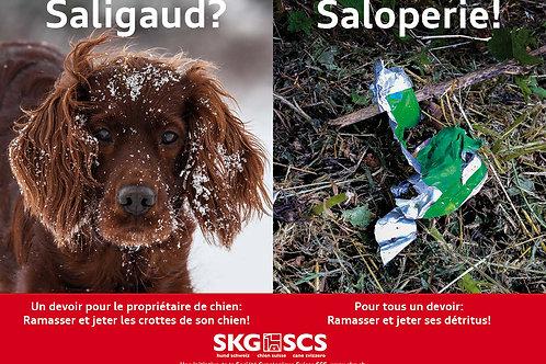 SKG Plakat Sujet 1 Französisch