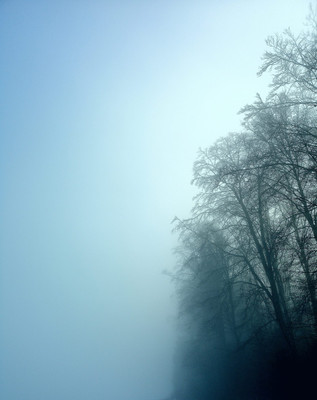 winter fog by Leo Gesess Photographer