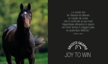 Grizzetti Galoppo Poster stallion Leo Ge