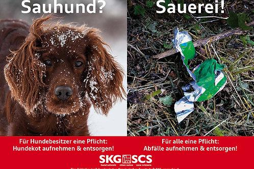 SKG Plakat Sujet 1 Deutsch